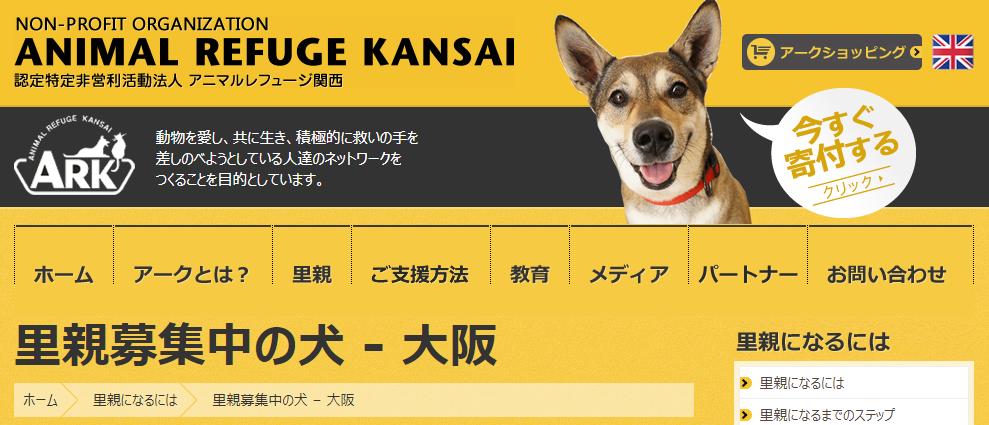 里親.保護犬.譲渡.関西