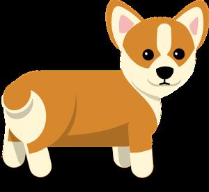 コーギ,犬